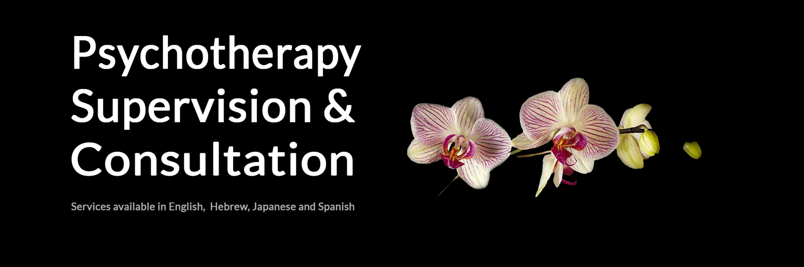 psychotherapy-consultation